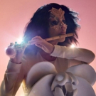 The Shed Hosts World Premiere of Concert Production by Björk Photo