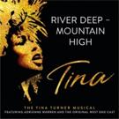 VIDEO: Adrienne Warren Premieres 'River Deep – Mountain High' from TINA - THE TINA TURNER MUSICAL