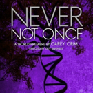 NEVER NOT ONCE Makes World Premiere at Purple Rose Theatre Company Photo