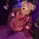 BWW Review: WICKET at Performing Arts San Antonio