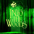 Belmont Theatre Goes INTO THE WOODS Photo