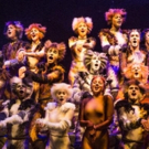 Limited Seats Available for CATS at Walton Arts Center