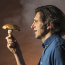 Adam Strauss's THE MUSHROOM CURE Makes Off-Broadway Debut Tonight Photo