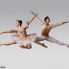 American Repertory Ballet Announces its 55th NUTCRACKER Season