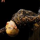 Luis Bravo's FOREVER TANGO Comes to Miami-Dade County Auditorium