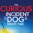 BWW Feature: THE CURIOUS INCIDENT OF THE DOG IN THE NIGHT-TIME at SOME THEATRE COMPANY, ORONO