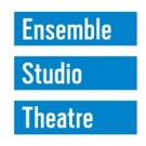 Ensemble Studio Theatre Announces 2018-19 EST/Youngblood New Members Photo