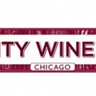 Pedro Capó, Darrell Scott and More On-Sale at City Winery Chicago