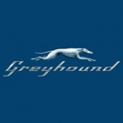 Greyhound Joins Nitro Circus in Recreating Iconic Evel Knievel Jump during HISTORY's 3-Hour Event, EVEL LIVE