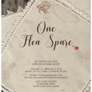 Mad Horse Theatre Company Heats Up January with ONE FLEA SPARE Photo