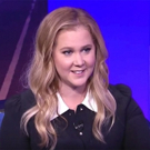 Theater Talk: Amy Schumer Chats METEOR SHOWER, Her Own Theatre Company and More Photo