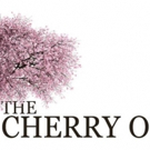 BWW Review: THE CHERRY ORCHARD at Metropolitan Theatre Ensemble @ Warwick Theater