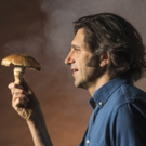 THE MUSHROOM CURE Extends Off-Broadway Through January 27 Photo