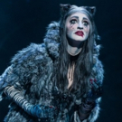 BWW Review: CATS Brings the Jellicle Ball to San Diego Photo