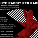 Troy Foundry Theatre Announces April Productions of WHITE RABBIT RED RABBIT