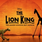 Make Your Broadway Debut in Disney's THE LION KING
