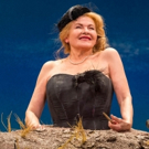 BWW Review: Dianne Wiest Brings On the Sun in Beckett's HAPPY DAYS