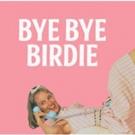 BYE BYE BIRDIE Starring Jason Alexander and Vanessa Williams Heads to BroadwayHD