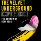 THE VELVET UNDERGROUND EXPERIENCE to Open in New York City This October
