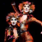 BWW Feature: CATS at RAI THEATER: time to make some new CATS Memories during the Holiday Season!