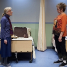 BWW Review: RIPCORD by David Lindsay-Abaire is Whimsical, Touching, and Excellently C Photo