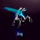 WHAT SO NOT Reveals New Single BEAUTIFUL Feat. Winona Oak and Via Nylon