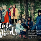 Stellar Cast Announced for INTO THE WOODS at The Cockpit Photo