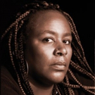 Dael Orlandersmith's UNTIL THE FLOOD Makes its Chicago Premiere Photo