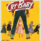 Casting Announced For The Long Island Premiere Of CRY-BABY At The Noel S. Ruiz Theatr Photo