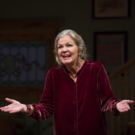 Photo Flash: First Look at Linda Gehringer in the Goodman Theatre's LADY IN DENMARK Photo