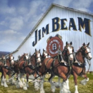 American Icons Budweiser and Jim Beam Come Together in First-of-its-Kind Collaboratio Photo