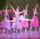 BWW Review: After 10 Years, Nashville Ballet's NASHVILLE'S NUTCRACKER Dazzles and Del Photo