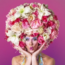 PRISCILLA QUEEN OF THE DESERT Comes To Slow Burn Theatre Company Photo