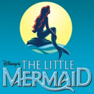 DM Playhouse Production Of Disney's The Little Mermaid Opens December 1