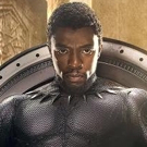 BWW Interview: Chadwick Boseman talks about playing T'Challa and being the 'Black Panther'