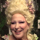 BWW TV: It's a Very DOLLY Hulaween when Bernadette Peters, Victor Garber & More Come Out to Support Bette Midler!