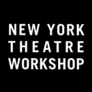 New York Theatre Workshop Announces Open Captioning for All Performances of LIGHT SHI Photo