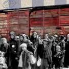 Critically Acclaimed Play LAST TRAIN TO AUSCHWITZ Returns To The Epstein Theatre Photo