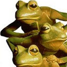 Patchogue Theatre Presents FROGZ!