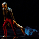 BWW Review: Dark Circles Contemporary Dance - LES FAIRIES AND BIG BAD WOLF at The Wyly Theatre