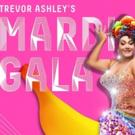 Cher Tribute To Join TREVOR ASHLEY'S MARDI GALA Photo