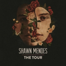 Shawn Mendes Announces 2019 Global Arena Tour Dates