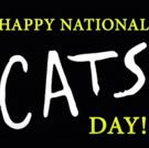 Keri Rene Fuller, Dan Hoy & More Will Lead CATS National Tour!