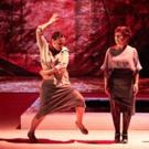 BWW Review: AVIGNON THEATRE FESTIVAL Presents GRITO PELAO by COMPAGNIE ROCÍO MOLINA