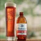 Budweiser Celebrates Summer with New Freedom Reserve Red Lager Photo