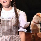 BWW Review: WIZARD OF OZ at The Playhouse Photo