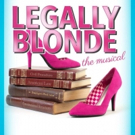 Riverside Theatre Stages Ever-Charming LEGALLY BLONDE Photo
