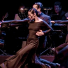 BWW Review: TANGUEROS DEL SUR PRESENTS ROMPER EL PISO - A PURE TANGO TREAT at The You Photo