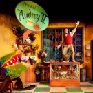 Photo Flash: First Look at Rivertown's LITTLE SHOP OF HORRORS Photos