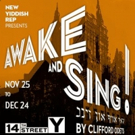 Israeli Husband & Wife Stars to Appear Off-Broadway in AWAKE AND SING!